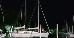 Marina Narval