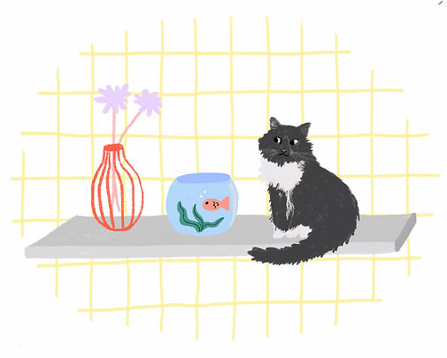 katie byrne roxy cat fishbowl illustration