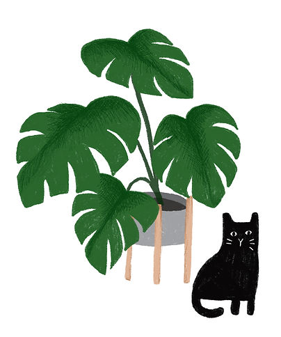 Katie Byrne Plant and Black cat illustration