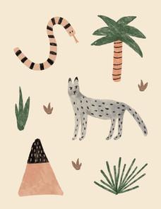 KB1014_Website_Desert Animals.jpg