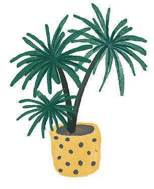 katie byrne plant watercolour illustration