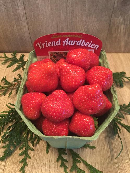 500 gram aardbeien