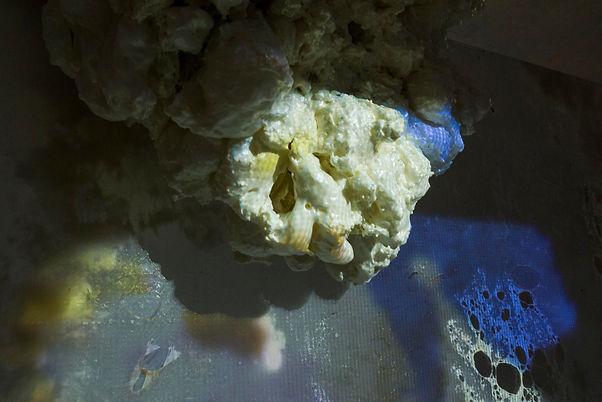 Nice Blob Closeup Light.jpg