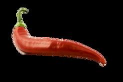 Chili 1.png
