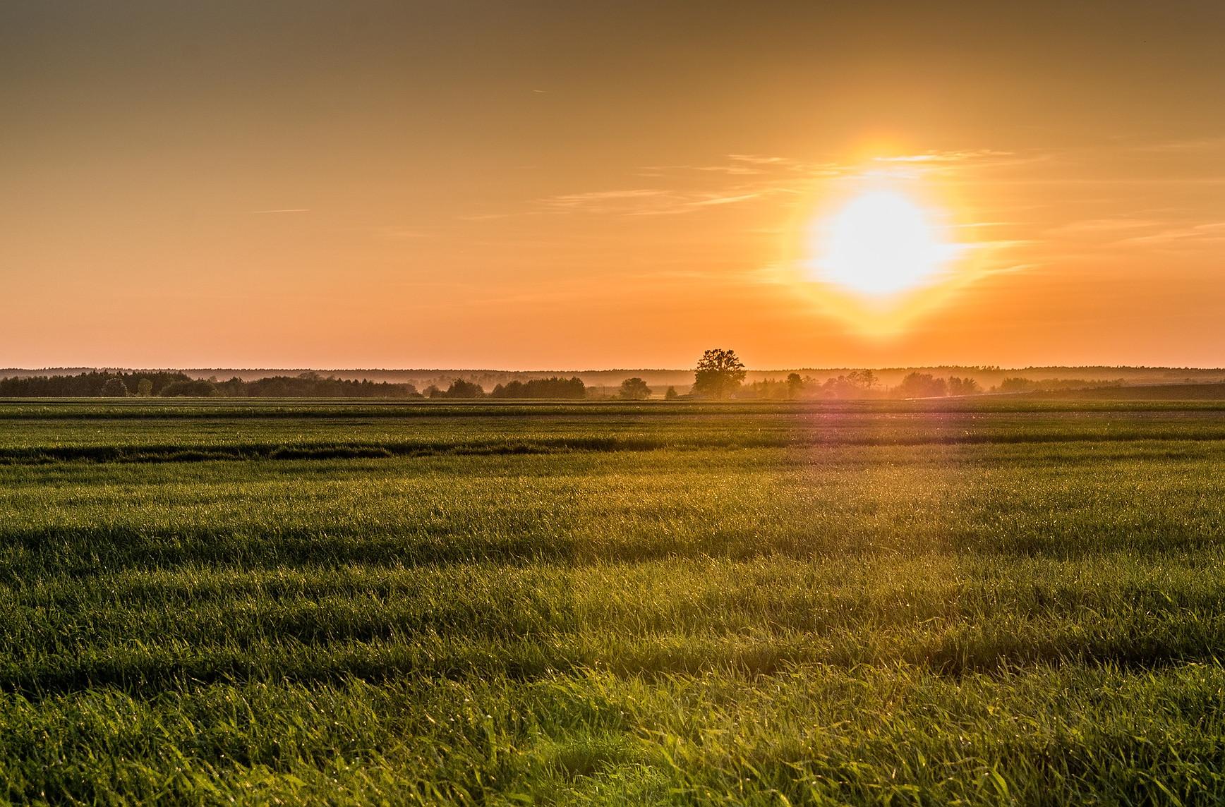 sunrise-3980036_1920.jpg