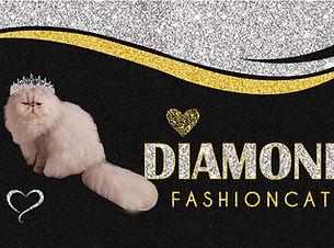 DIAMOND FASHIONCAT.jpg