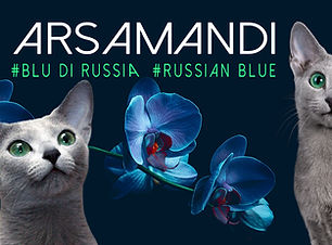 ARSAMANDI COVER FB_OK.jpg