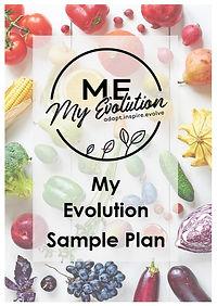 sample plan cover.jpg