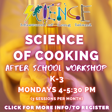 Science of Cooking After school Workshop (5).png