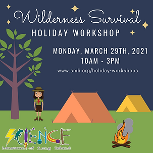 Wilderness Survival Holiday Workshop 3.2