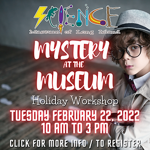 2.22.22 MYSTERY AT THE MUSEUM WEBSITE.png