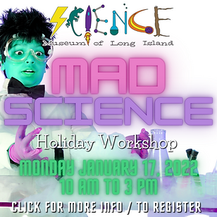1.17 MAD SCIENCE WEBSITE.png