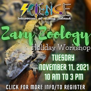 11.11.21 - Zany Zoology Website.png