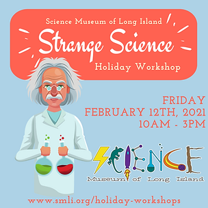 Strange Science Holiday Workshop 2.12.20