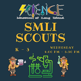 SMLI Scouts After School Workshop (Websi