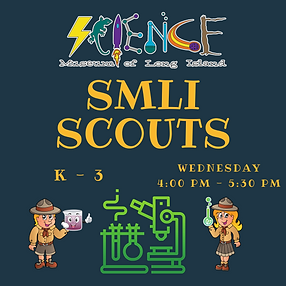 SMLI Scouts After School Workshop (Websi