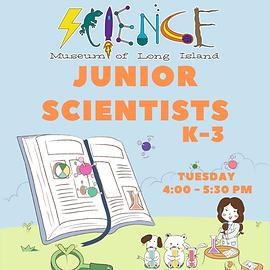 Junior Scientists After school Workshop