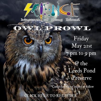 SMLI Owl Prowl Graphics (4).png