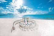 TRADE_Seashells Wedding Chairs-057.jpg
