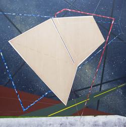 移植∞繁殖計畫21木板、壓克力、鉛筆、炭精筆150cm X 150cm X 5c