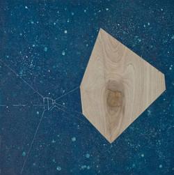 移植∞繁殖計畫16 木板、壓克力、鉛筆、炭精筆100cm X 100cm X 5