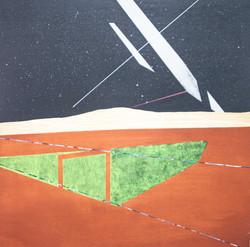 移植∞繁殖計畫28木板、壓克力、鉛筆、炭精筆100cm X 100cm X 5c