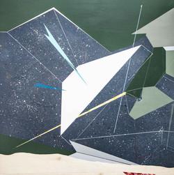移植∞繁殖計畫22木板、壓克力、鉛筆、炭精筆120cm X 120cm X 5c