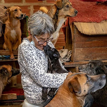 41 Dogs 🐕and 31 🐈Cats, Meet Maria Diaz