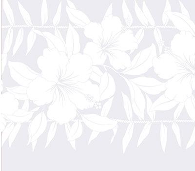 PT-036 White White