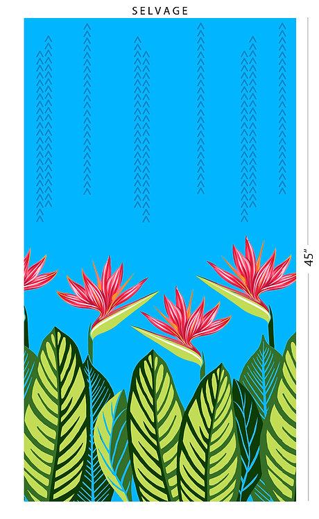 CHOE-534 Turquoise