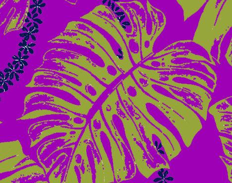 KG-03 Orchid