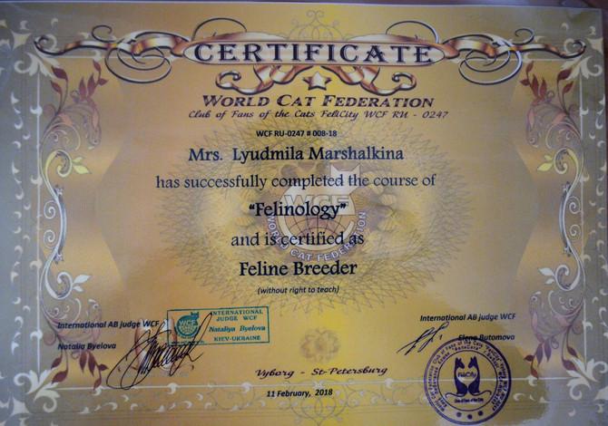 Сертификат об окончании фелинологических курсов.Курс читала Международный эксперт-фелинолог Белова Н