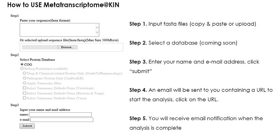 Hot to use Metatranscriptome@Kin