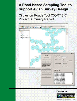 CORT3.jpg