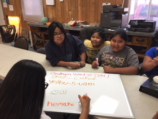 Tohono O'odham Word of the Week #50!