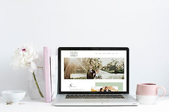 SM2 MRBLE PNY laptop_WW Website.jpg