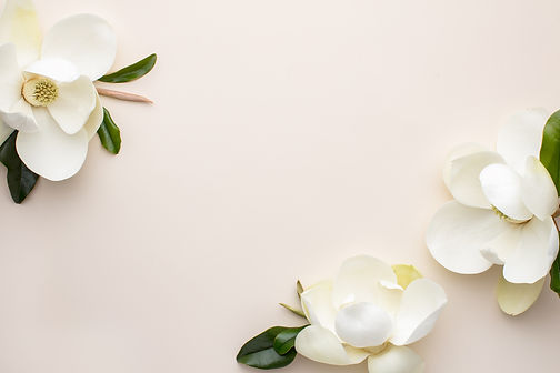 May Magnolias Free Styled Stock_SC Stock