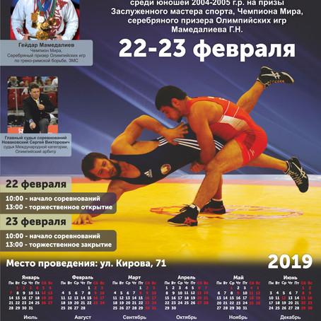 Турнир на призы ЗМС, серебряного призёра Олимпийских игр Г.Н. Мамедалиева