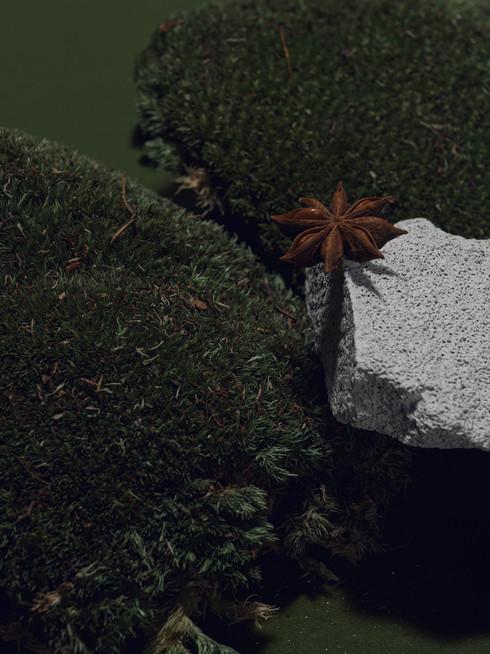 Still Life_4_web.jpg
