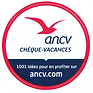 Capture logo ANCV.PNG