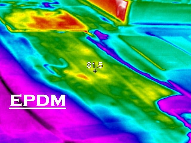 EPDM (Rubber)