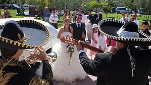 mariachis2.jpg