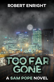 Too Far Gone Kindle Version May 2020.jpg