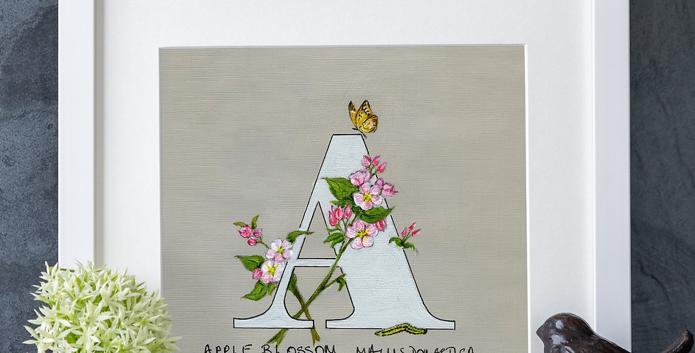 A (Apple Blossom)