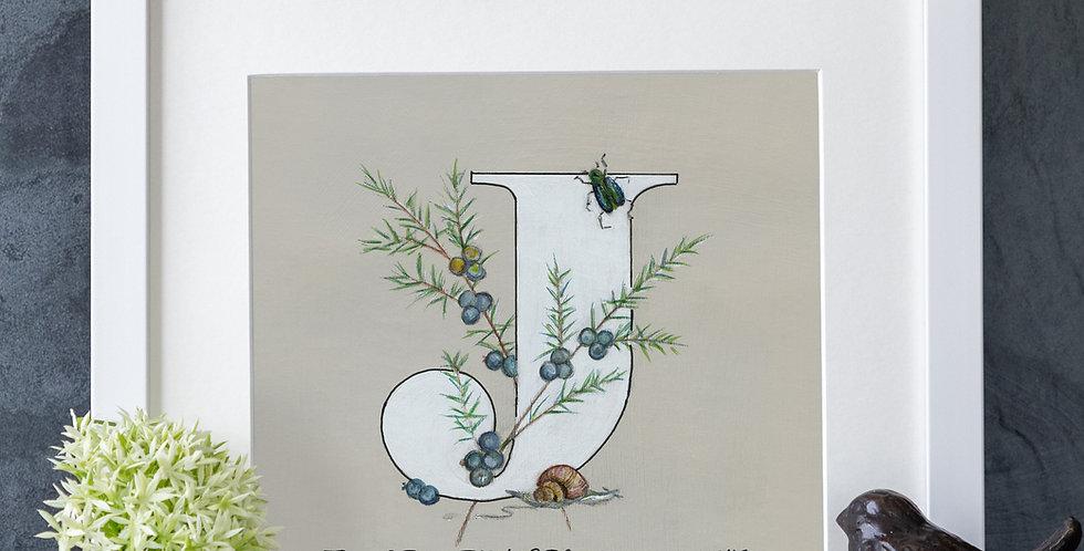 J (Juniper)