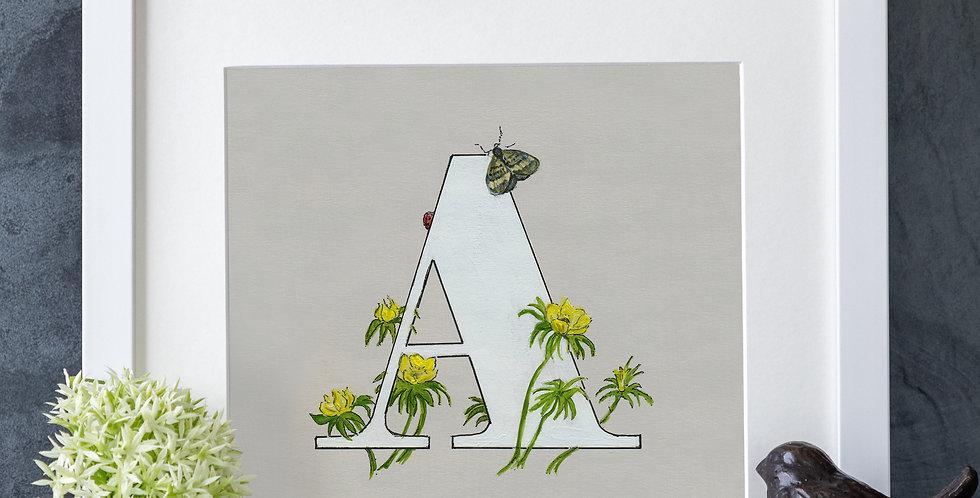 A (Aconite)