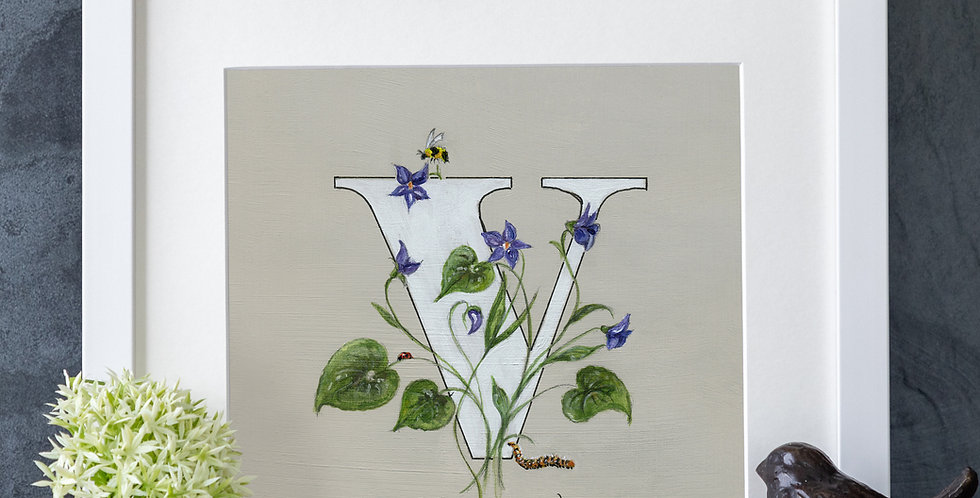 V (Violet)