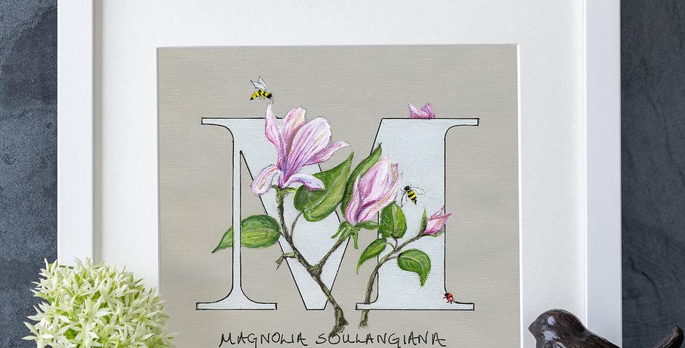 M (Magnolia)