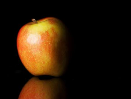 Qu'est ce qu'un OGM?