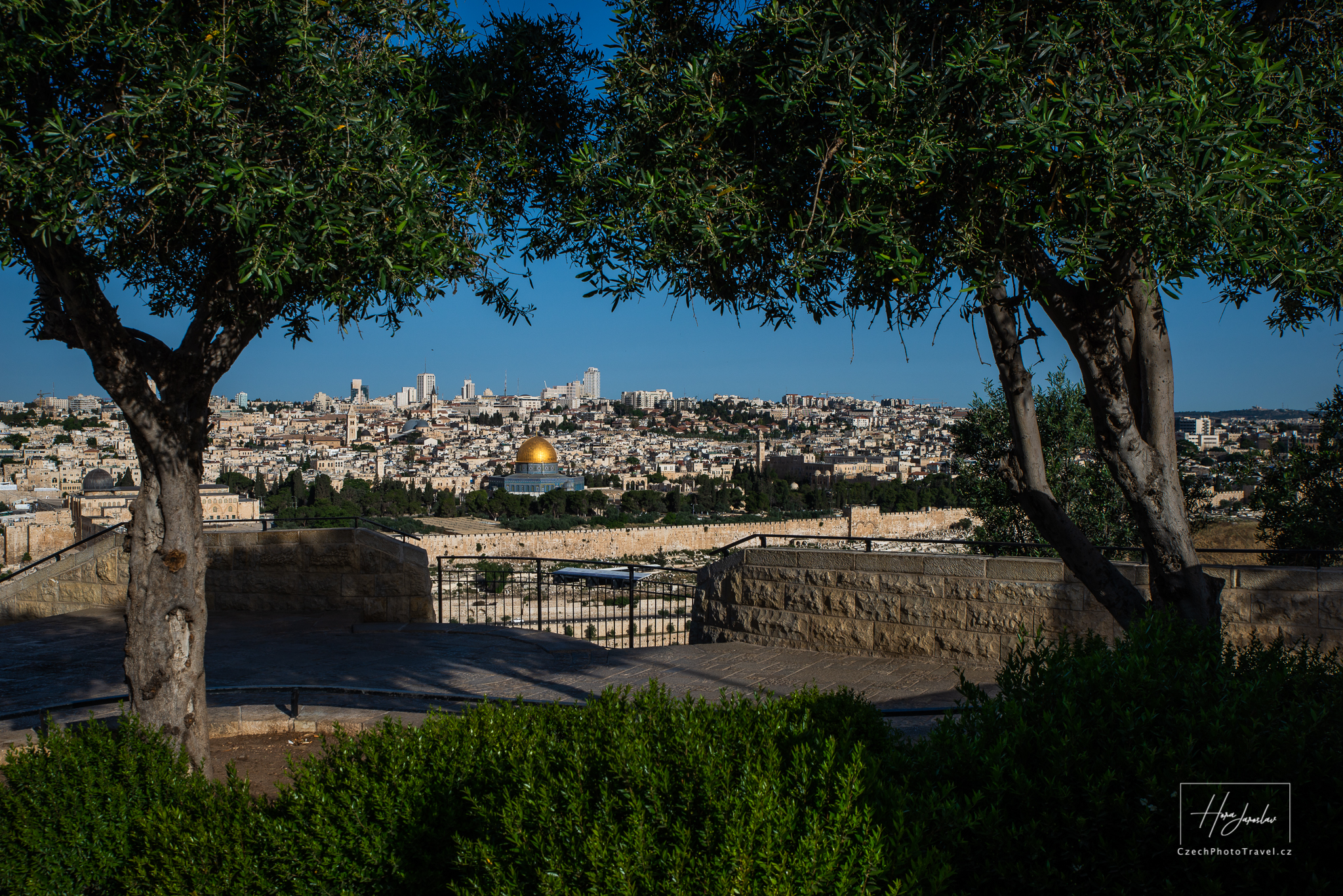 Pohled z Olivové hory